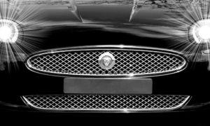 Jaguar Content