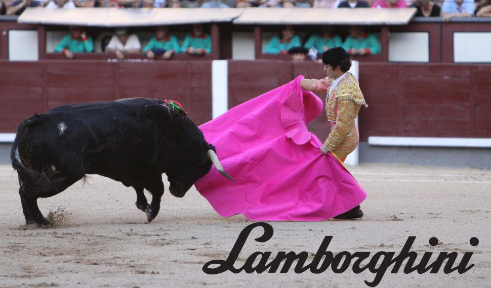 Bull fight Lamborghini
